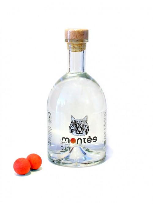 Montês